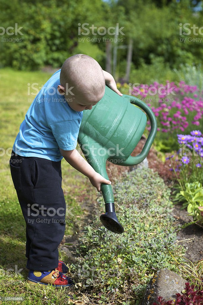 Little boy is looking after the flowers stock photo