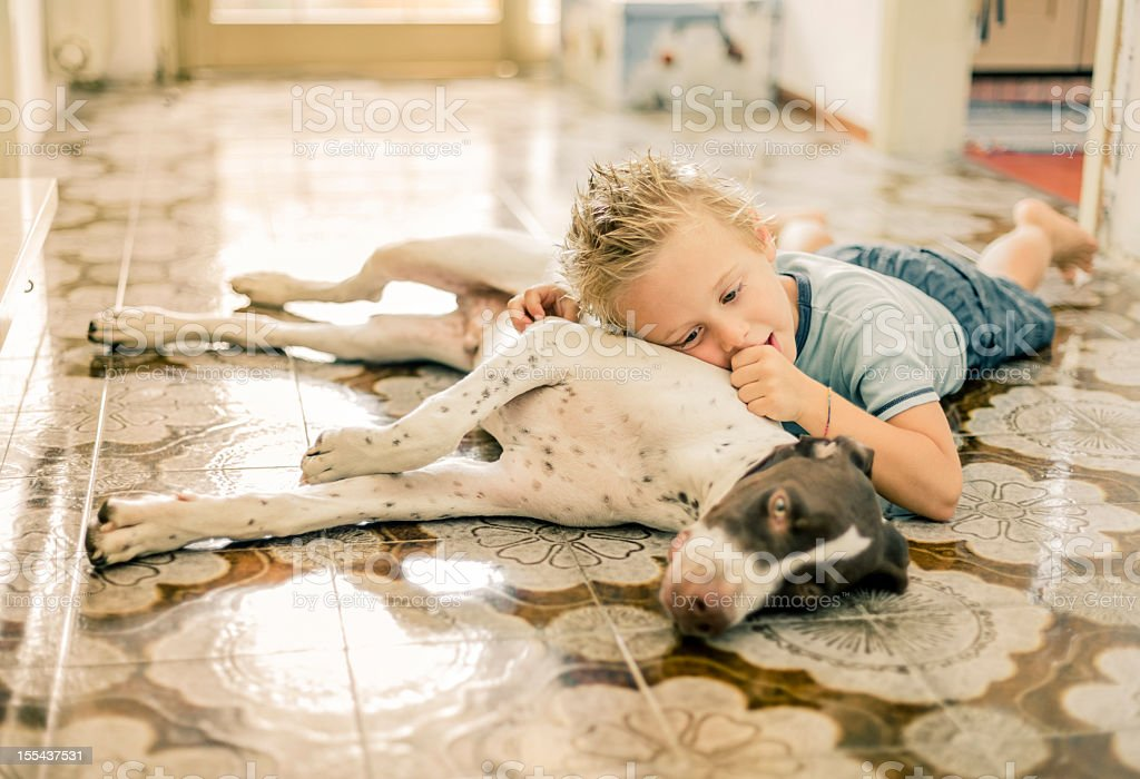 A little boy is lying on the floor with this cute dog stock photo