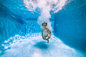 Underwater portrait of a little boy after cannonballing to swimming pool.\nShot with Nikon D850