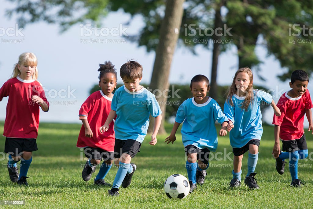 A multi-ethnic group of elementary age children are playing a soccer...