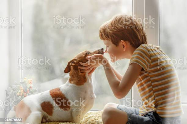 Little boy kisses the dog in nose on the window picture id1018978888?b=1&k=6&m=1018978888&s=612x612&h=nkpxwhybgasczrlfmyqnusscfvz3he64dn82ogp3 y4=