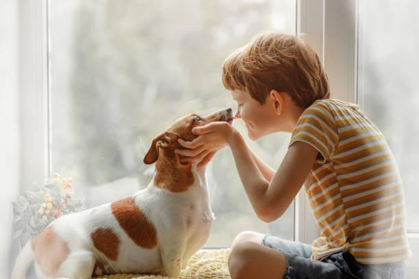 Kleiner Junge küsst den Hund in Nase am Fenster. – Foto
