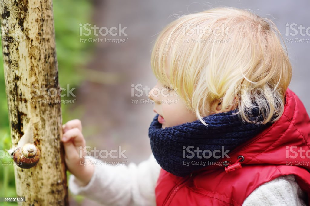 Little boy looking on big snail during hike in forest stock photo
