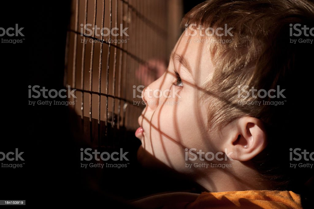 Little Boy Looks Out The Cage royalty-free stock photo