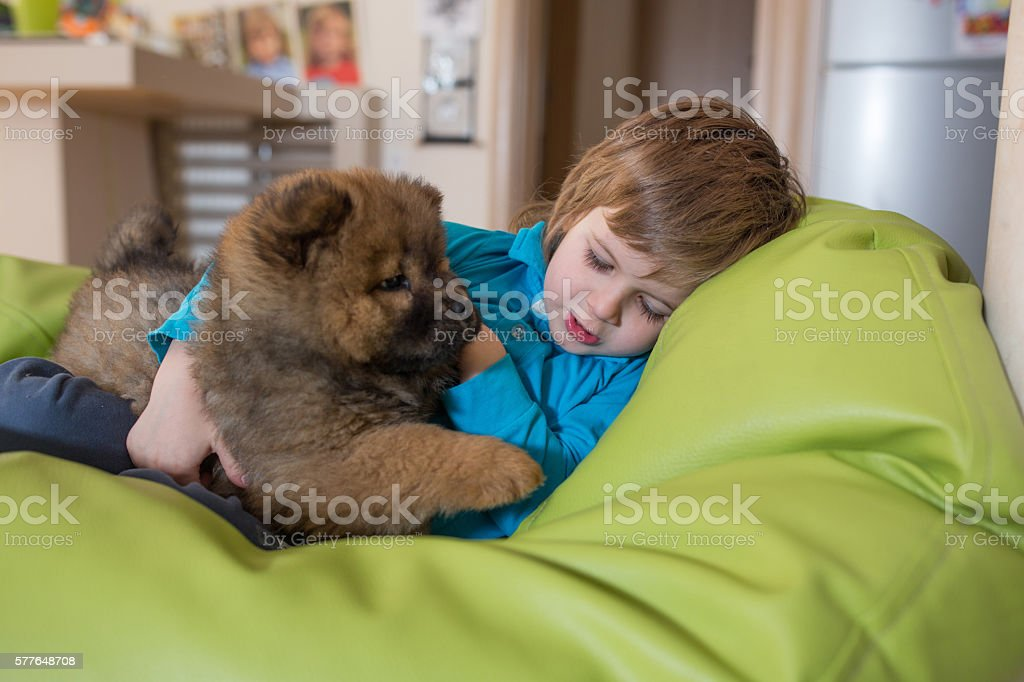 Little boy napping in bean bag with his puppy. stock photo
