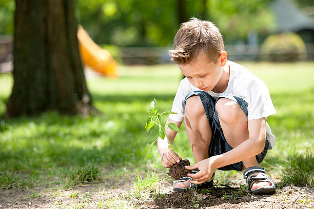 Kleine Junge Pflanzen – Foto