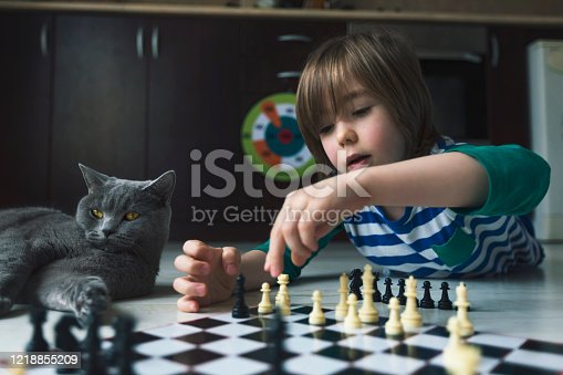 Little boy playing chess. Cat next to him. Virus outbreak. Social distancing. Lack of friends. Loneliness.