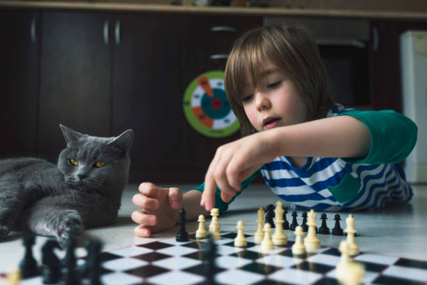 Little boy playing chess. Cat next to him. Little boy playing chess. Cat next to him. Virus outbreak. Social distancing. Lack of friends. Loneliness. child prodigy stock pictures, royalty-free photos & images
