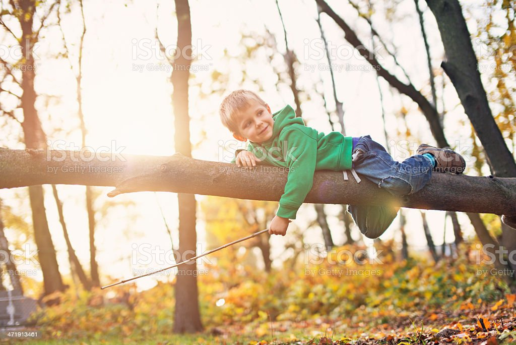Little boy playing on tree royalty-free stock photo