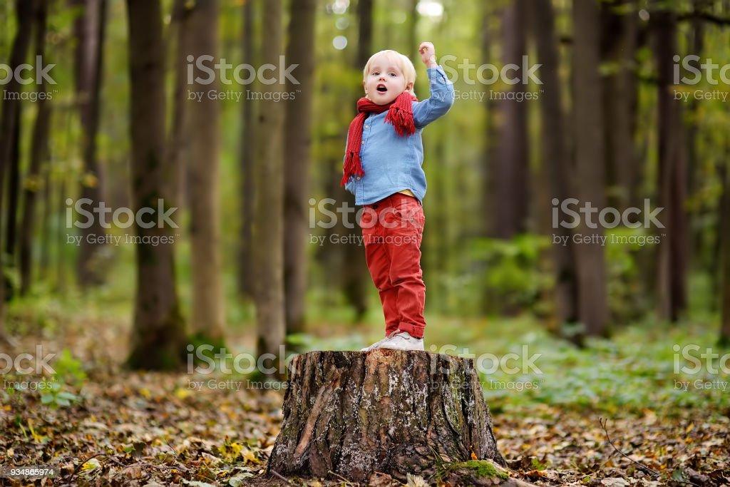Niño jugando en el tocón de madera durante el paseo en el bosque - foto de stock
