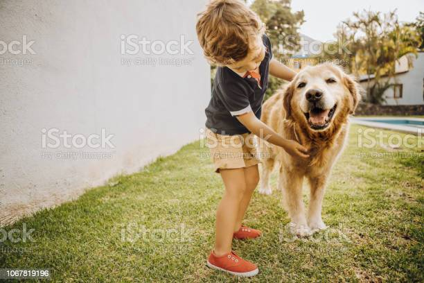 Little boy playing with a dog picture id1067819196?b=1&k=6&m=1067819196&s=612x612&h=ugwgdfmj jotcyry72emhsavwxuixv nk0ztevc n i=