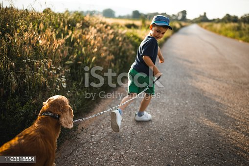Little boy playing with dog
