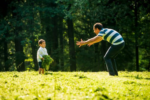 kleiner junge spielt mit seinem vater mit frisch geschnittenem gras - kemter stock-fotos und bilder
