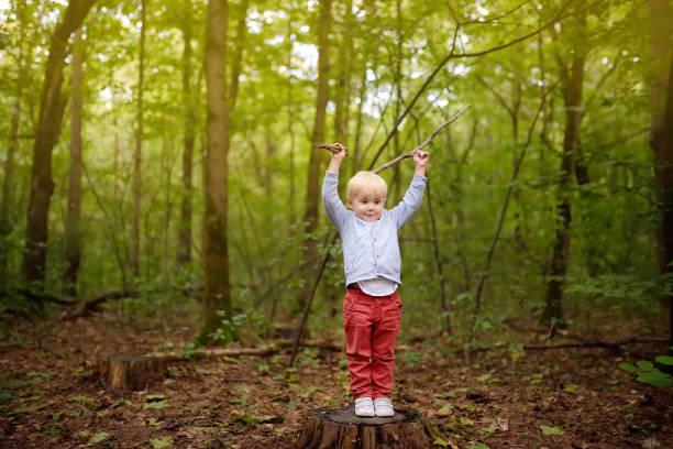 Niño pequeño jugando con palos en el muñón de madera durante el paseo por el bosque en primavera, verano o día de otoño. - foto de stock