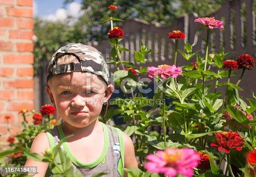 istock Little boy plays in a flowering summer garden 1167418476