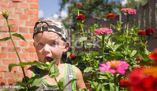 istock Little boy plays in a flowering summer garden 1167418487