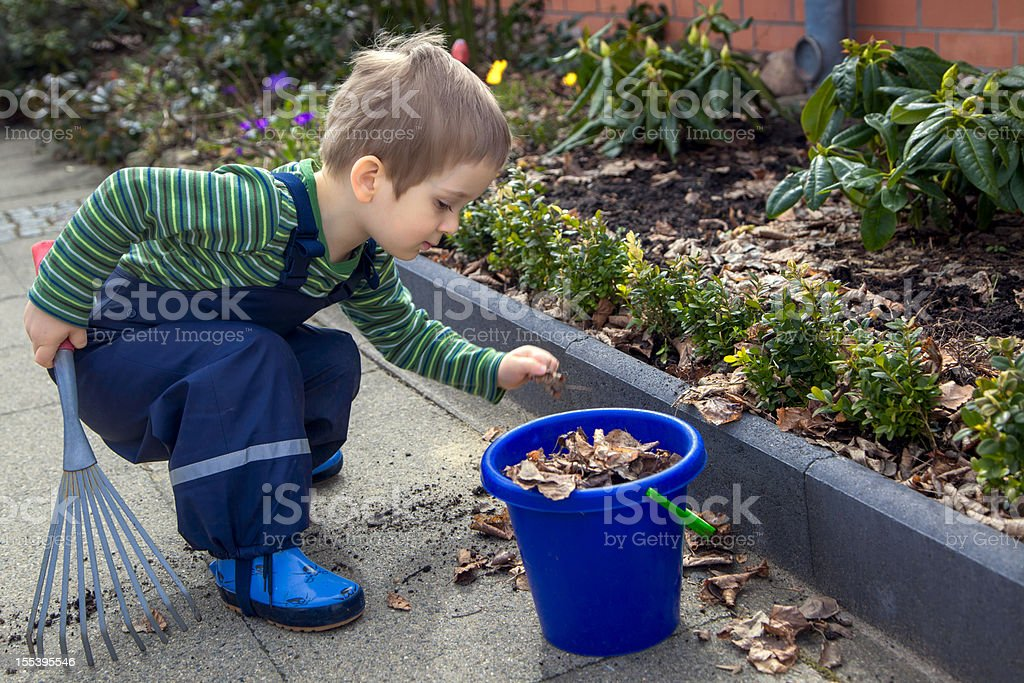 Little Boy Raking Leaves in Spring Garden stock photo