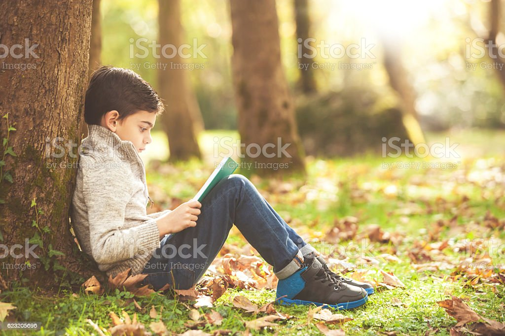 Little boy reading a book in the park stock photo