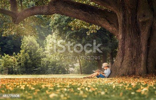 istock Little boy reading a book under big linden tree 481775508