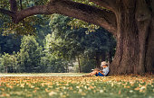 Little boy reading a book under big linden tree by CreativePhotoTeam.com