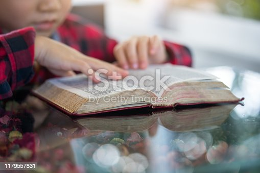 Little boy reading the Holy Bible.