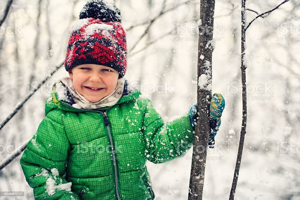 Little boy shaking show from trees. stock photo