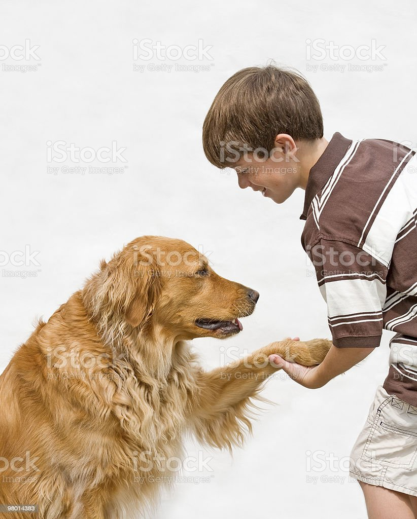 Little Boy Shaking With Dog royalty-free stock photo