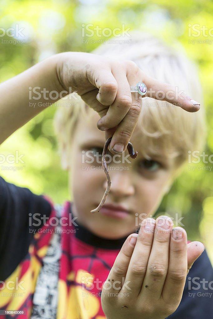 Little boy showing earthworm stock photo