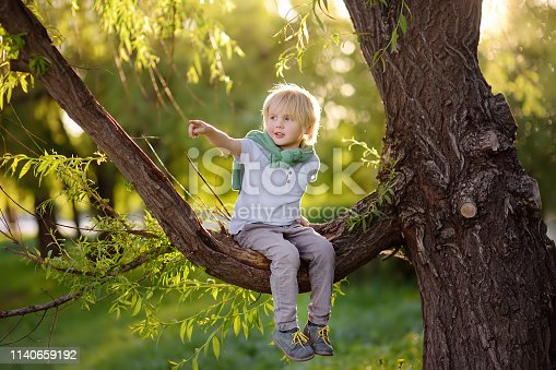 istock Little boy sits on a branch of a big tree and points with his finger. Child's games. Active family time on nature. Hiking with little kids. 1140659192