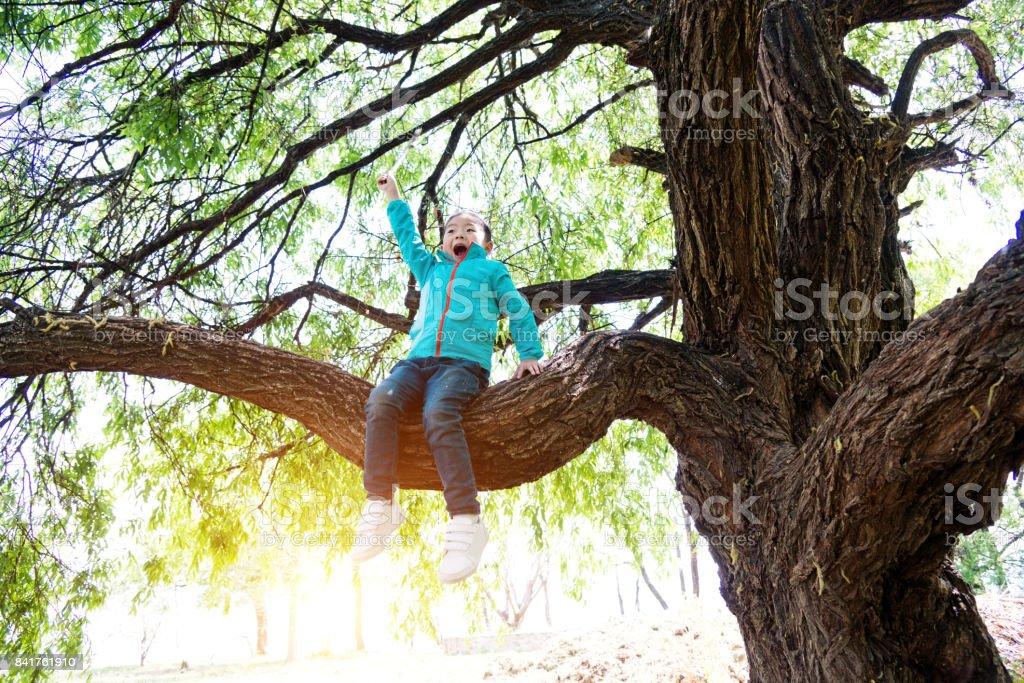 Klettergerüst Um Baum : Kind mit nackten füßen baum im park klettern lizenzfreie fotos