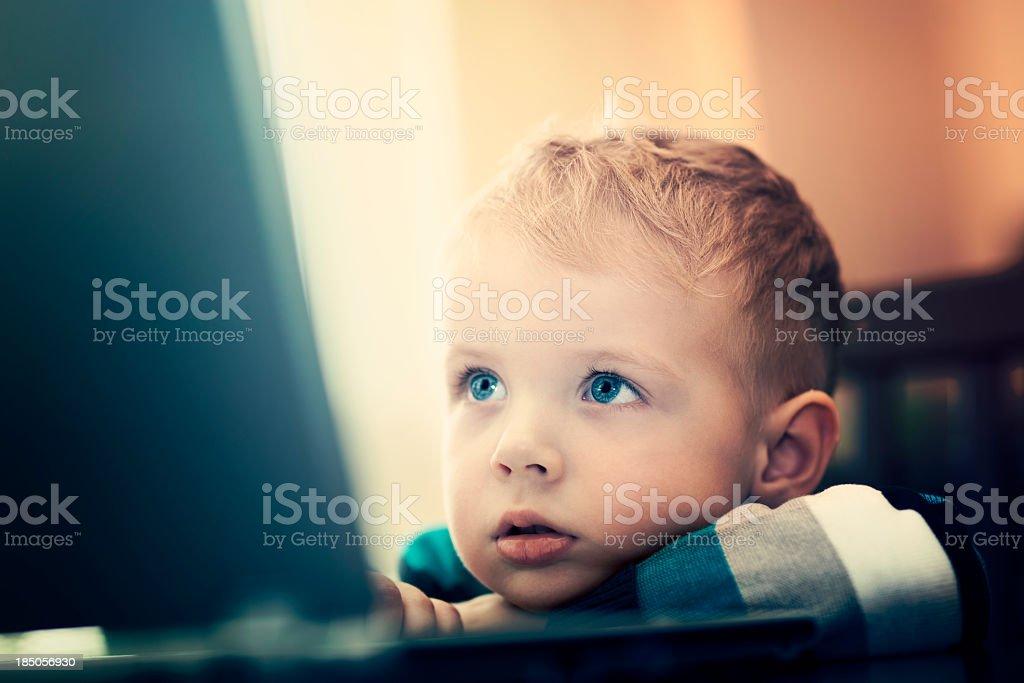 Little boy surf the Internet royalty-free stock photo