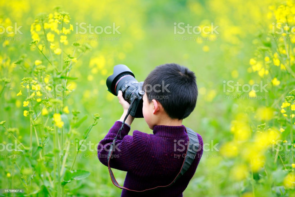 little boy use camera shooting flower stock photo