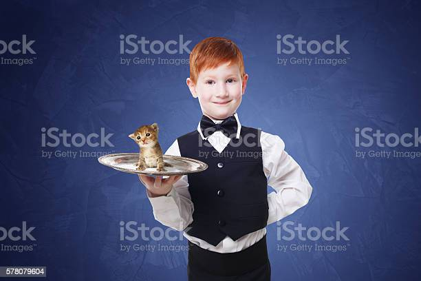 Little boy waiter stands with gray kitten on tray picture id578079604?b=1&k=6&m=578079604&s=612x612&h=wq5acfqy lt bjkrcugtwpi io2ugx8um3zkutzqoc8=