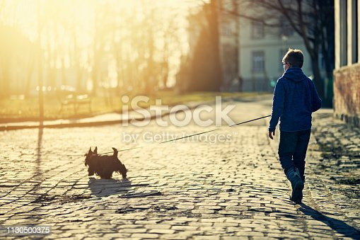 Little boy aged 7, is crouching on the grass with his black dog. He is smiling and looking at the dog. Sunny autumn day.