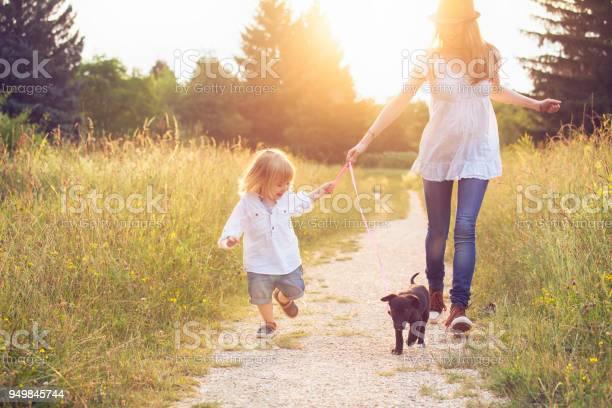 Little boy walking in park with his mother and puppy picture id949845744?b=1&k=6&m=949845744&s=612x612&h=0irzeavkklbnyd3xnk4flkzff1neb8a6k4rkxj9hrda=
