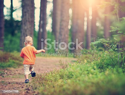 istock Little boy walking in the forest 1045347768