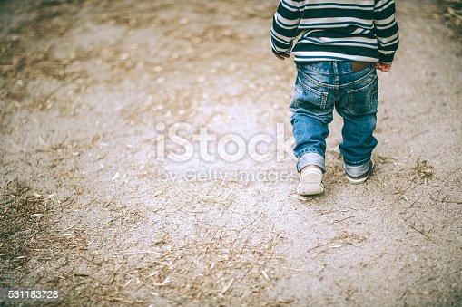 istock little boy walking 531183728