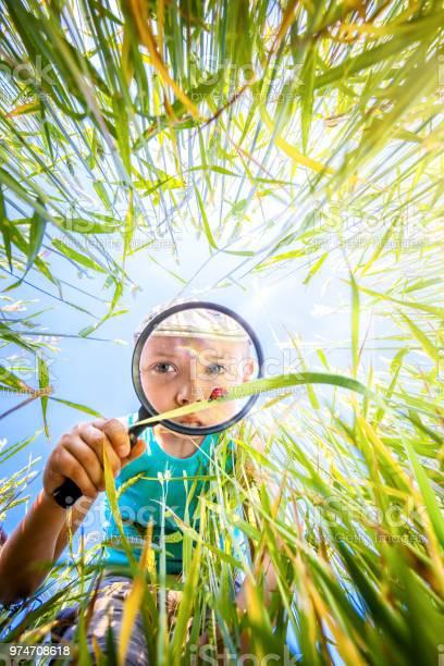 Little boy watches through the magnifying glass a ladybug in the in picture id974708618?b=1&k=6&m=974708618&s=612x612&h=xdjodieunvkyjemmim9fymnpvpywwfzybbaegcxsjho=