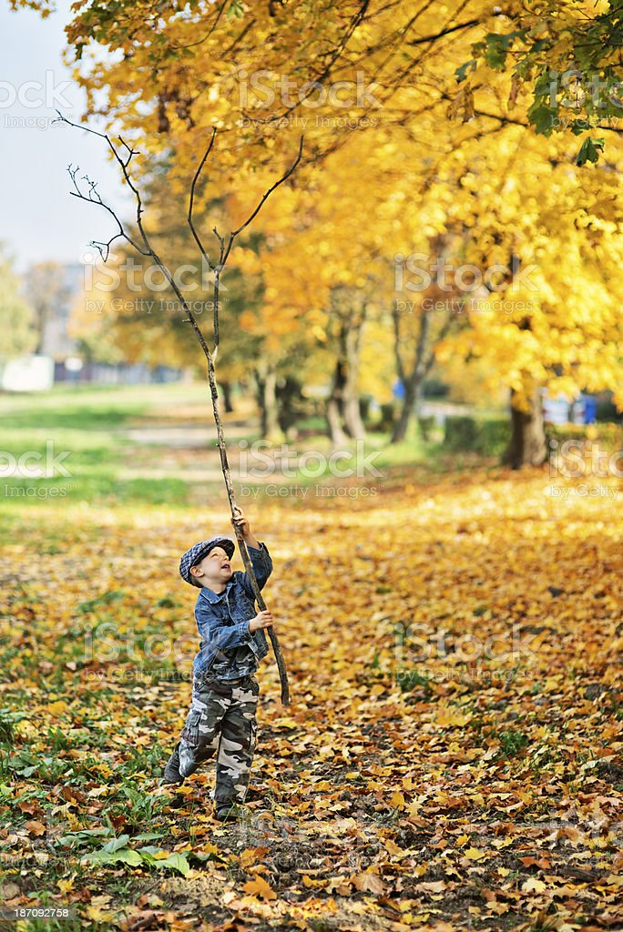 Little boy with a big stick royalty-free stock photo