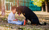 Little boy playing with his dog outdoors in the park