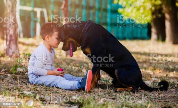 Little boy with big dog picture id1050021738?b=1&k=6&m=1050021738&s=612x612&h=g zmksrh8ynov8vv9qumio3jkr0wylhytfhqvojycei=