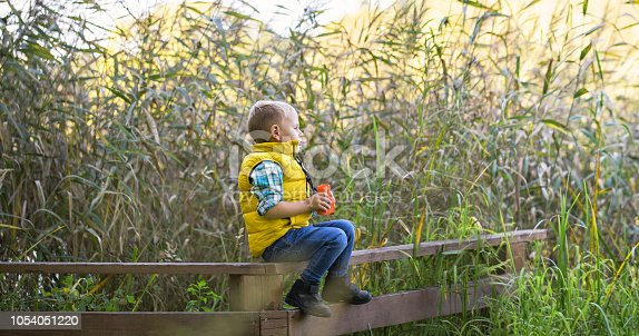 e077b6b3 istock Little boy with binoculars sitting on a wooden fence 1054051220 >>
