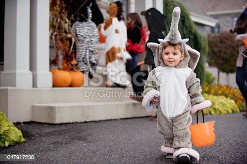 Six cute kids in animal costumes dressed up for Halloween sitting behind the witch's house decorated for Halloween. The little boy with Down syndrome is sitting on the witch. There is a zebra, a monkey, a horse, an elephant, a bear and a bee. Photo was taken in Quebec Canada.