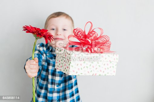 Happy cheerful little boy with red flower and gift box