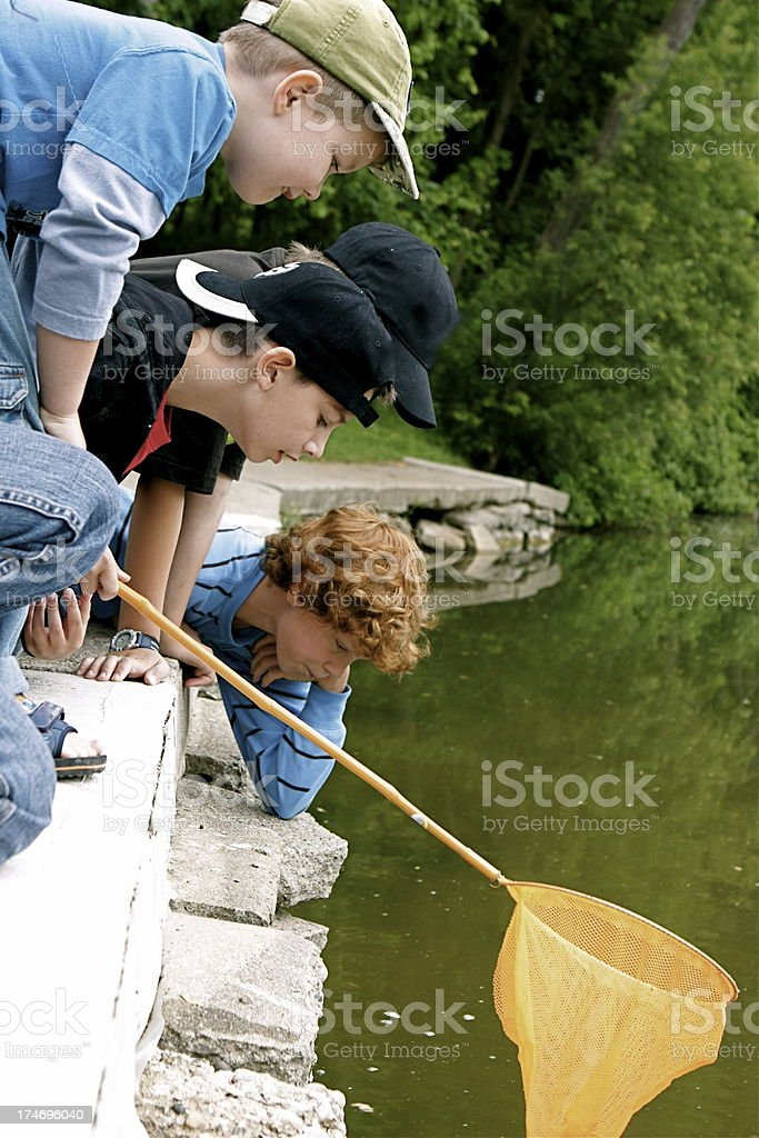 Little Boys at Water's Edge royalty-free stock photo