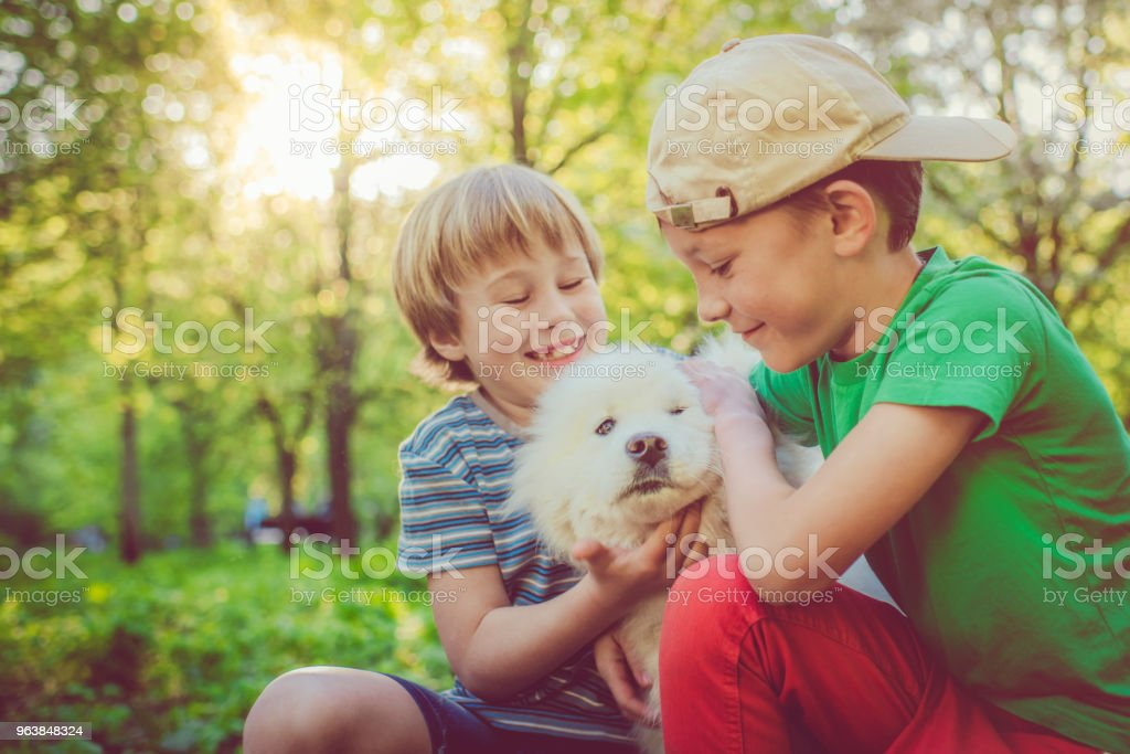 Little boys having fun with their dog - Royalty-free 8-9 Years Stock Photo
