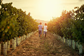 Little boys aged 9 running between vineyard rows in Tuscany, Italy.\nNikon D850