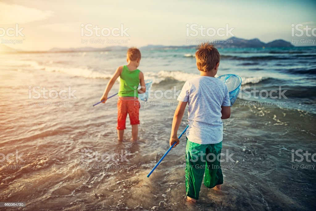 Little boys trying to catch fish in sea stock photo
