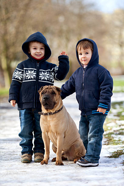 Little boys with dog in a park picture id476131117?b=1&k=6&m=476131117&s=612x612&w=0&h=fuhrigsu8 xhkgxu08ssl5mknvme26hi00x30mh9mjo=