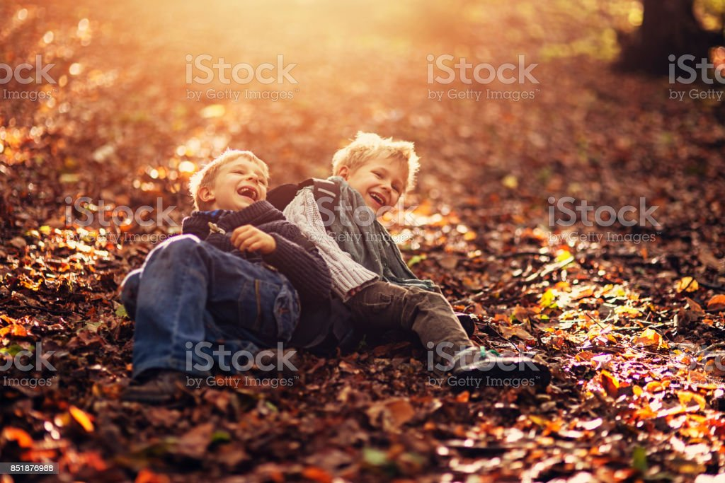 Little brothers laughing in the autumn forest stock photo